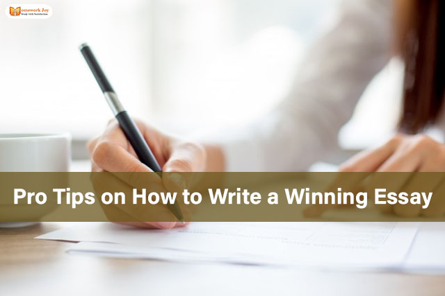 Pro Tips on How to Write a Winning Essay 2