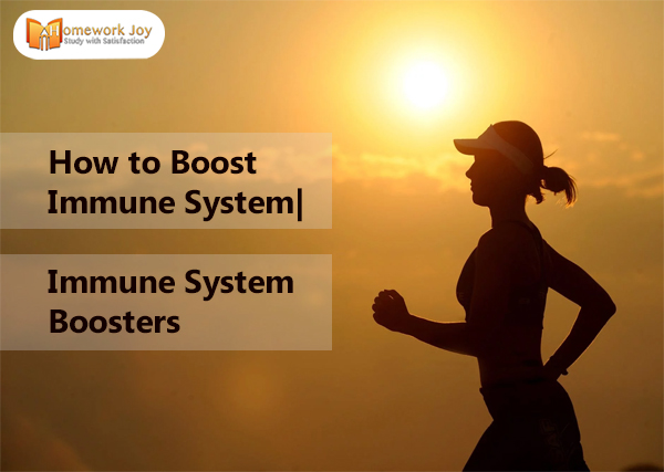 How to Boost Immune System Immune System Boosters